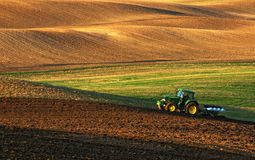 Tractor plows a field in the spring accompanied by rooks Tractor Stock Photo