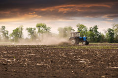 Tractor plows a field in the spring against a beautiful sunset sky. The tractor plows the field in the spring, and behind it the dust rolls and birds fly to find Royalty Free Stock Photography