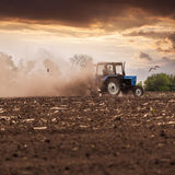 Tractor plows a field in the spring against a beautiful sunset sky. The tractor plows the field in the spring, and behind it the dust rolls and birds fly to find Stock Photos