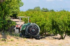 Pomegranate tree plantation in Turkey, horticulture. Tractor in a pomegranate plantation in Turkey, horticulture, gardening, farmland royalty free stock photos