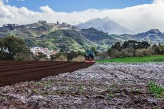 Tractor on potato field. Preparing the ground  with a tractor  for potato cultivation field Royalty Free Stock Photos