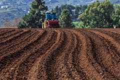 Tractor on potato field Stock Image
