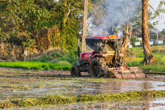 Tractor Prepares Rice Paddy, Agriculture In Thai Royalty Free Stock Images