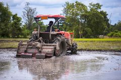 Tractor is preparing the area for growing rice Royalty Free Stock Photography