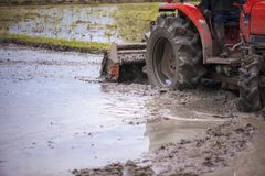 Tractor is preparing the area for growing rice Stock Photography
