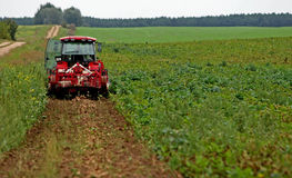 Tractor preparing land for sowing. Tractor with cultivator handles field before planting. Preparing land for sowing at spring Royalty Free Stock Photo