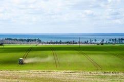 Tractor que cultiva en un campo verde Fotografía de archivo