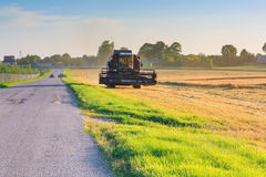 Tractor reaping wheat Stock Image