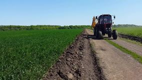 The tractor rides along the road among the fields of young wheat stock video footage