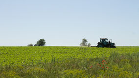 Tractor rides on the field. Processing plant ranks Royalty Free Stock Photo