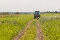 Tractor rides on the spring meadow Royalty Free Stock Photo