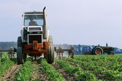 Tractor riding through field Royalty Free Stock Photography
