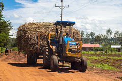 Tractor on road Royalty Free Stock Photos