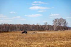 Tractor rojo con una paleta arrastrada para segar y escardar los campos para la agroindustria del color amarillo debajo del cielo foto de archivo libre de regalías