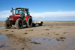 Tractor on a sandy beach Royalty Free Stock Photo