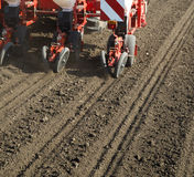 Tractor seeding crops at field. Stock Photos