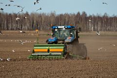 Tractor sowing seed. Tractor at work on a field and wild birds flying around stock photos
