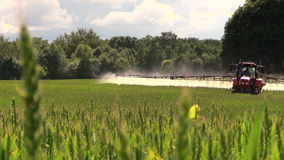 Tractor spray fertilize field with chemicals for crop protection stock video