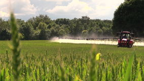 Tractor spray field for crop plants protection from weed stock video