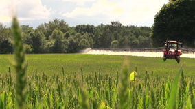 Tractor spray green crop field on farm sunny day. Focus change. stock video footage