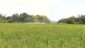 Tractor spray liquid fertilizer cereal field growth, farm work stock video