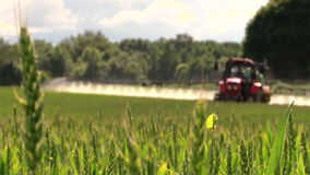 Tractor sprayer work in green young cereal field on summer day stock video