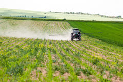 Tractor spraying, agriculture Stock Photography