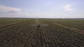 Tractor is spraying fertilizers potato field.Aerial video. stock footage