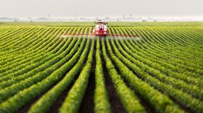 Tractor spraying a field. Of soybean royalty free stock photography