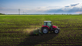 Tractor spraying field at spring royalty free stock images