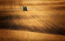 Tractor while spraying fields where corn rises Stock Image