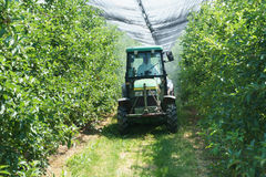 Tractor spraying greenhouse Stock Photography