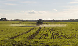 Tractor spraying. Stock Images
