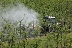 Tractor spraying insecticide or fungicide in apple orchard. Tractor using a air dust machine sprayer with a chemical insecticide or fungicide in apple orchard stock image