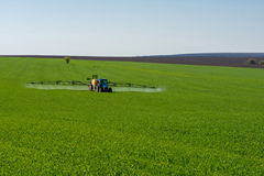 Tractor spraying pesticide in a field of wheat royalty free stock images
