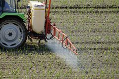 Tractor spraying pesticide. On a field with young plants stock image