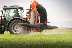 Tractor spraying pesticide on wheat field with sprayer Royalty Free Stock Images