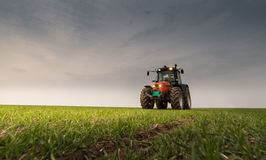 Tractor spraying pesticide on wheat field with sprayer Royalty Free Stock Photography