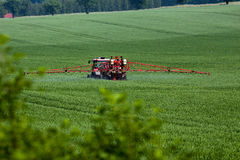 Tractor spraying pesticides on big green field Stock Image