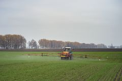 Tractor spraying pesticides on big green field with young grain royalty free stock photography
