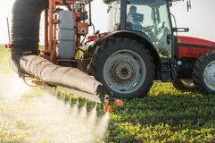 Tractor spraying pesticides Stock Image
