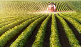Tractor spraying pesticides at soy bean field. S stock photography