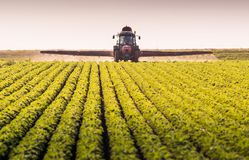 Tractor spraying pesticides on soybean field with sprayer at spr royalty free stock photos