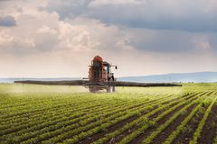 Tractor spraying pesticides on soybean field with sprayer at spr Stock Photography