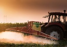 Tractor spraying pesticides on vegetable field with sprayer at s Stock Images