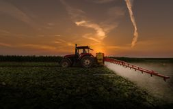 Tractor spraying pesticides on vegetable field with sprayer at s Stock Photography