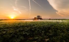 Tractor spraying pesticides on vegetable field with sprayer at s Royalty Free Stock Photography