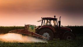 Tractor spraying pesticides on vegetable field with sprayer  Royalty Free Stock Photo
