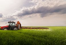 Tractor spraying pesticides on wheat field with sprayer at sprin stock image