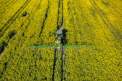 Tractor spraying on the rape field Royalty Free Stock Photo